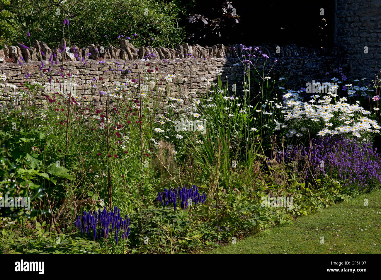 Summer Herbaceous boarder with dry stone wall, Cotswolds,England - Stock Image