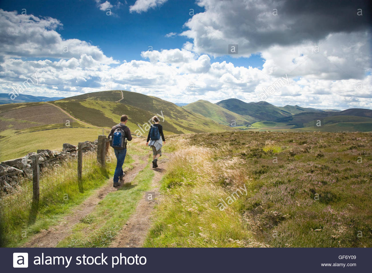 Walking in the Pentland Hills Regional Park on a Summer's day, Midlothian, Scotland - Stock Image