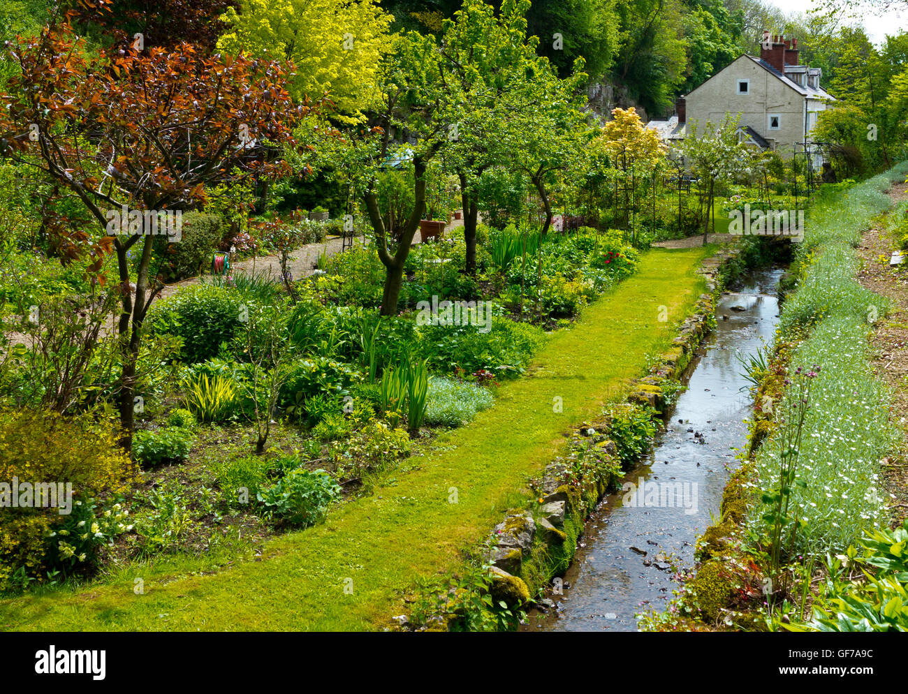 Canal in the Cascades Garden at Bonsall near Matlock in the Derbyshire Dales Peak District England UK - Stock Image