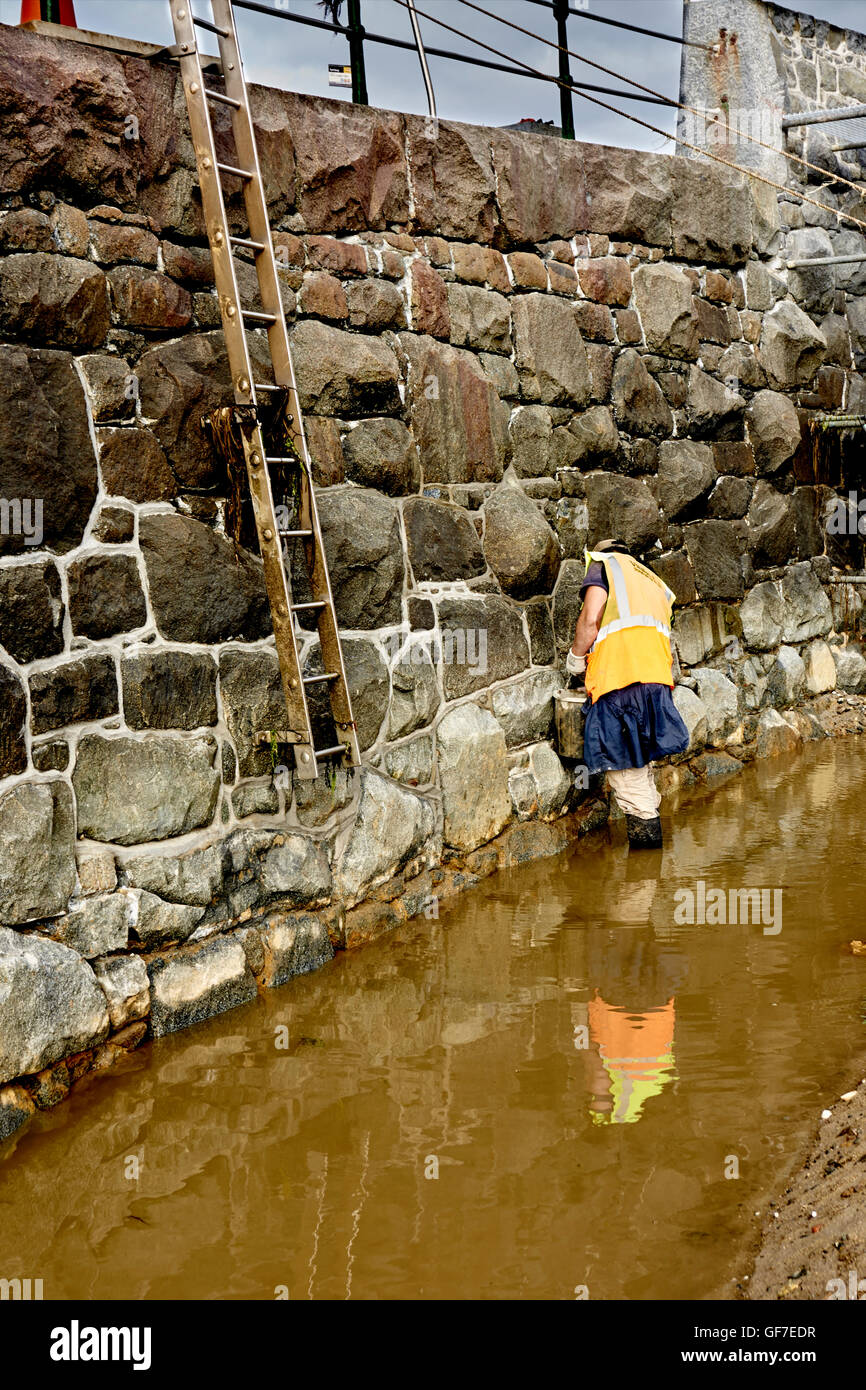 Re-pointing granite sea wall - Stock Image