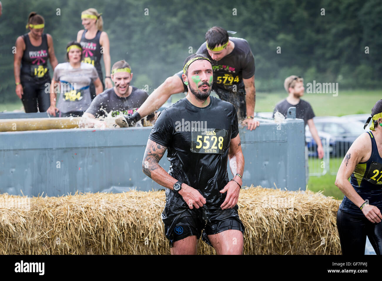 Adult competitors plunging into and climbing out of an ice-filled pool in a Total Warrior event at Leeds, 2016 - Stock Image