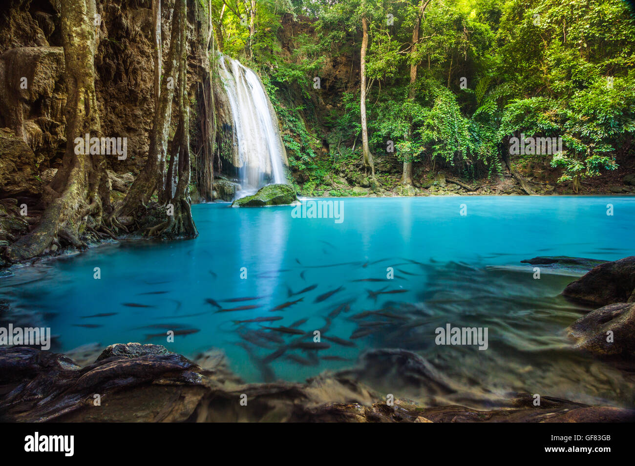 Erawan waterfall environment with big tree and emerald water in Kanchanaburi, Thailand - Stock Image