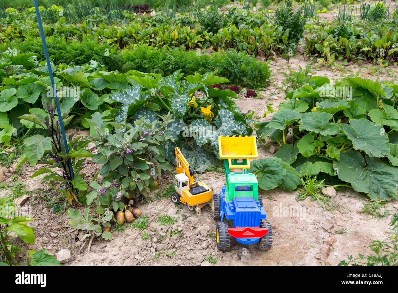 Kitchen garden, gardening, vegetable gardening, children's toys, Stock Photo