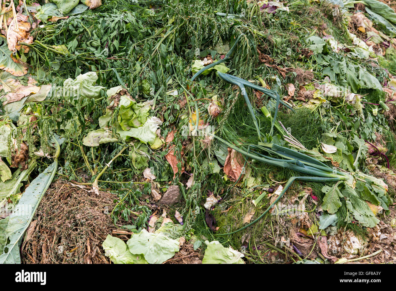 Kitchen garden, gardening, vegetable gardening, compost heaps, recycling, Stock Photo