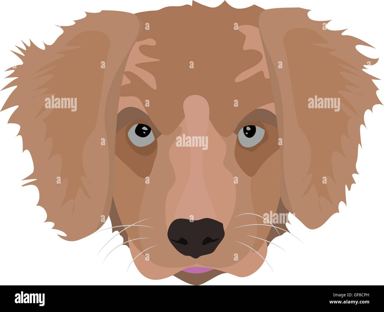 Illustration Golden Retriever Puppy For Creative Use In Graphic