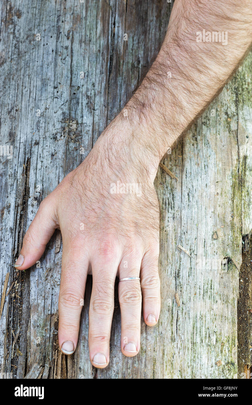 Torts hairy hand, xxx bear anal porn
