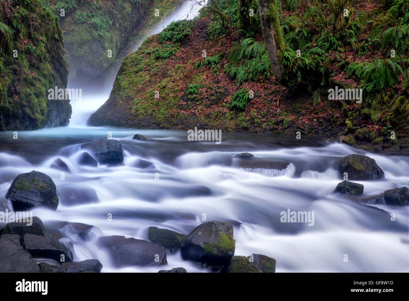 Bridal Veil Falls. Columbia River Gorge National Scenic Area, Oregon - Stock Image