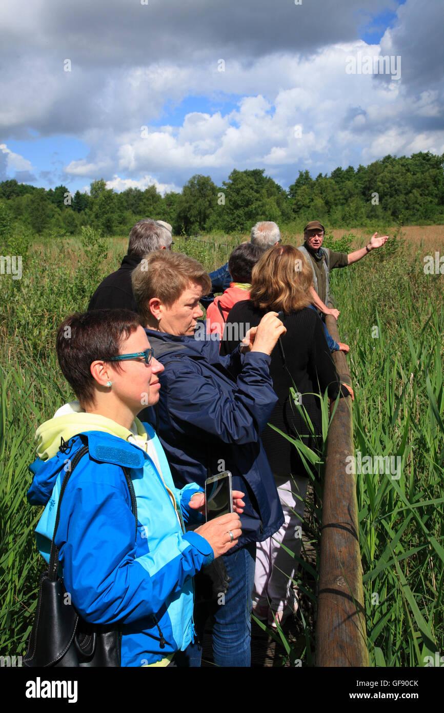 Zarrentin, guided nature tour, lake Schaalsee, Mecklenburg Western Pomerania, Germany, Europe - Stock Image