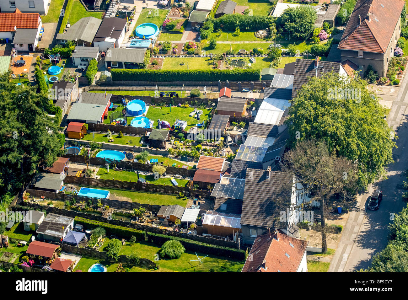 Aerial view, neighboring gardens with hedges and fences, rubber pools, neighborhood, Gladbeck, Ruhr area, North - Stock Image