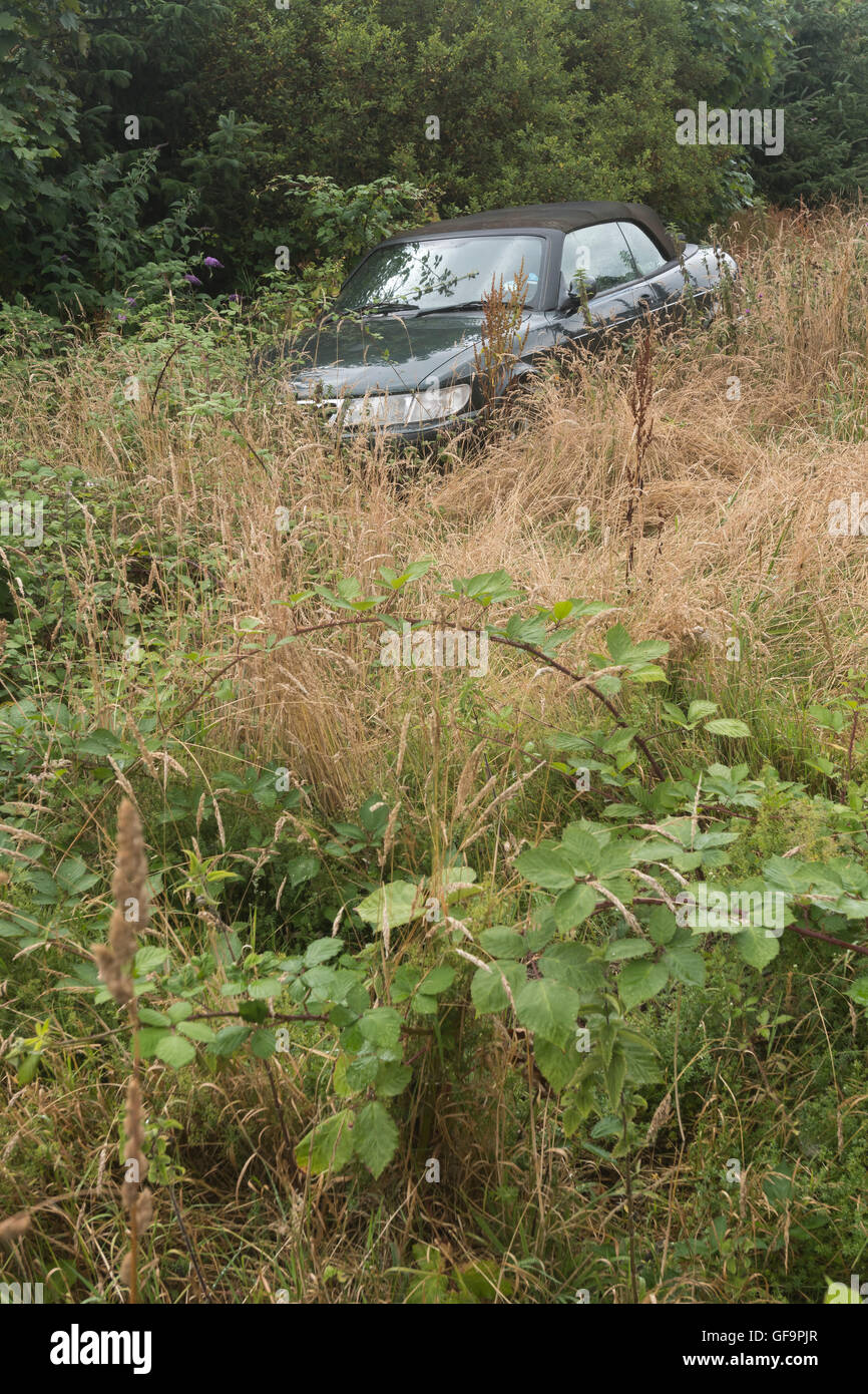 Abandoned car in overgrown field verge - concepts of recycling, waste, and environmental pollution, something abandoned, - Stock Image