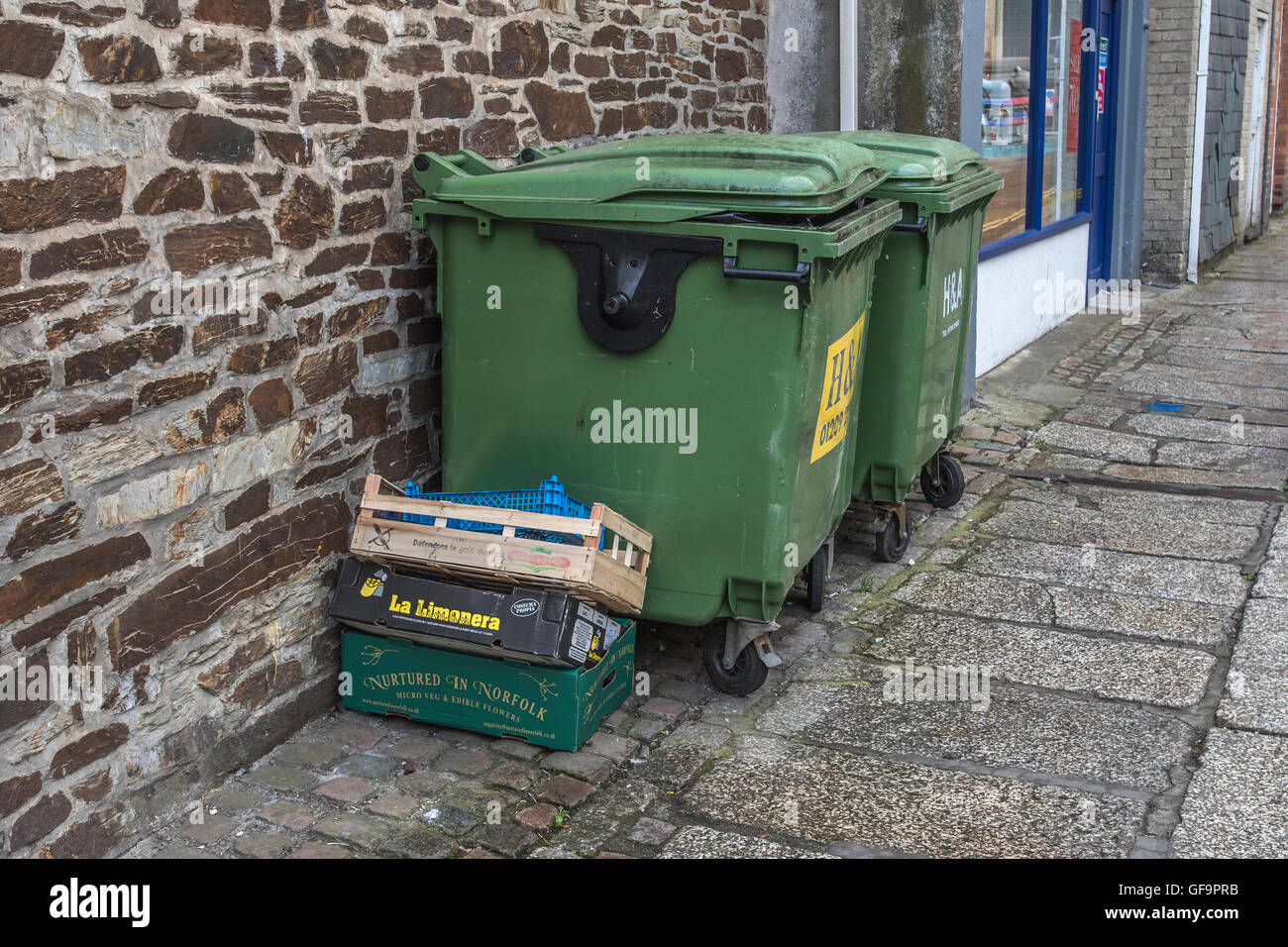 A couple of industrial recycling wheely bins and waste boxes outside a shop in Truro, Cornwall. Rubbish bins outside Stock Photo
