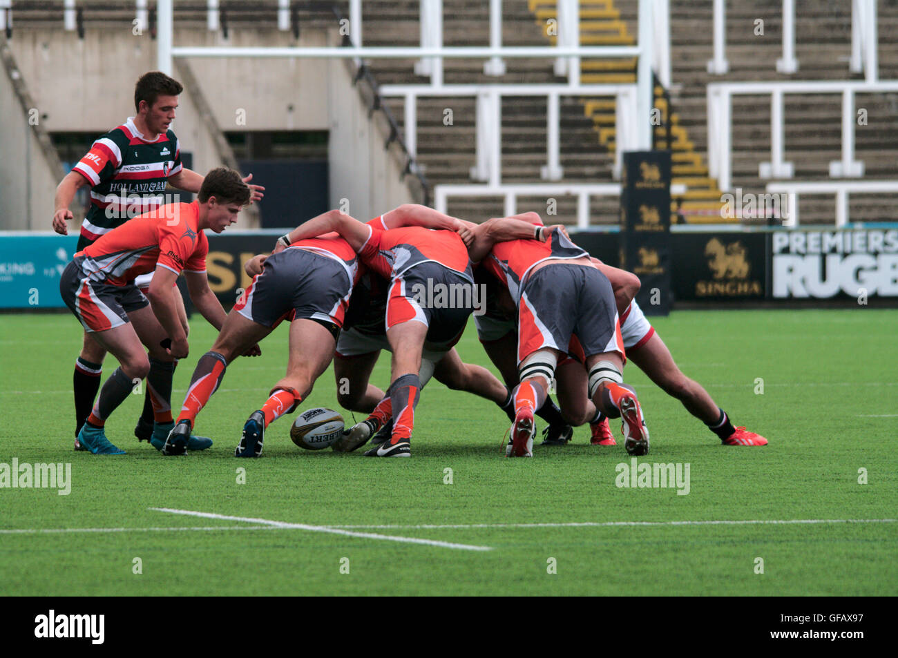 Newcastle upon Tyne, UK, 30 July 2016, Newcastle Falcons win a scrum during their match against Leicester Tigers - Stock Image