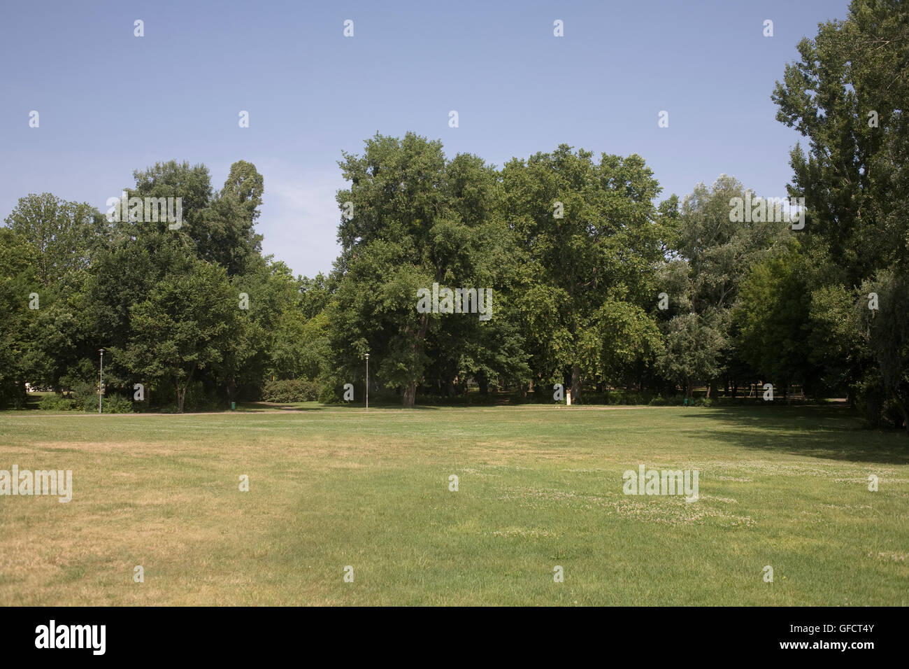 Open space in City park on summer morning - Stock Image