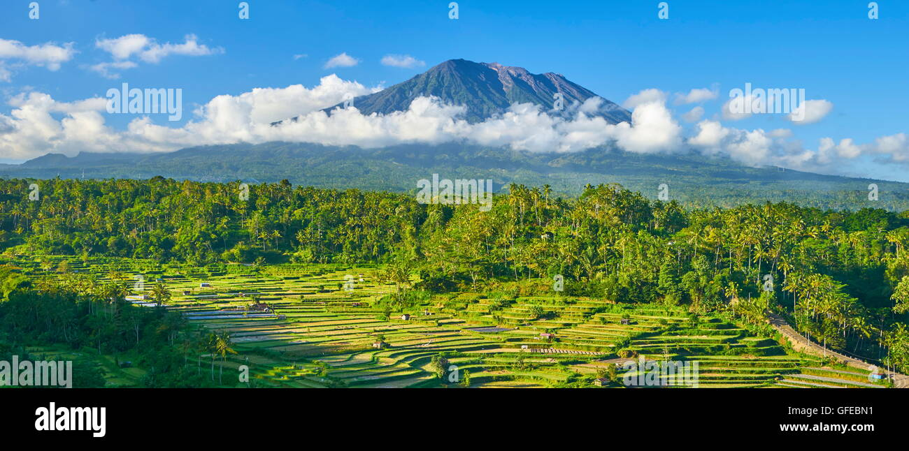 Panoramic landscape of Gunung Agung Volcano and rice field terrace, Bali, Indonesia - Stock Image