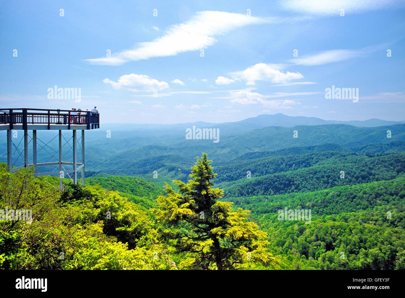 Pisgah National Forest Surrounds Blowing Rock Overlook View Point