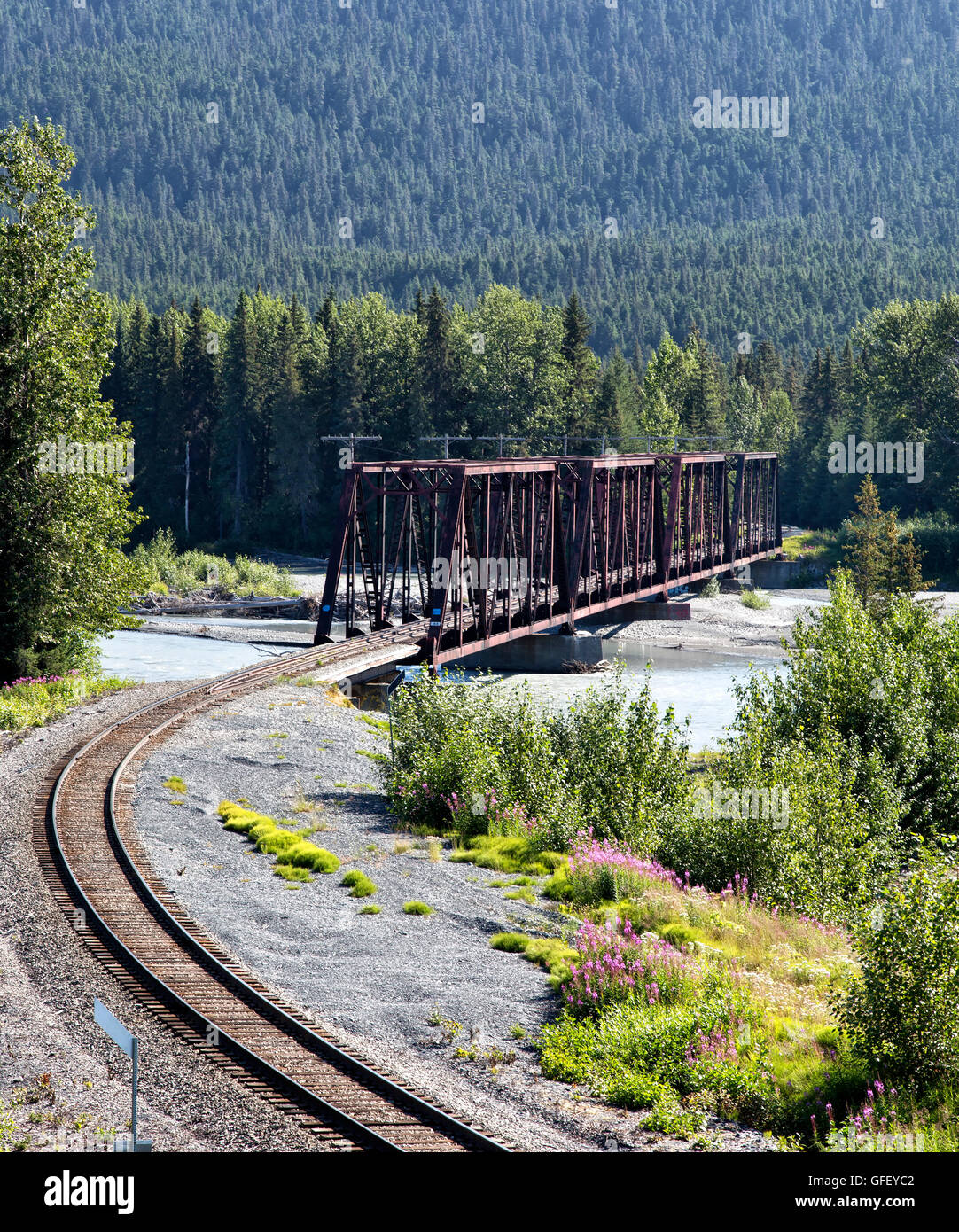 Railroad trestle crossing glacier-fed Snow river, Black Spruce forest. - Stock Image