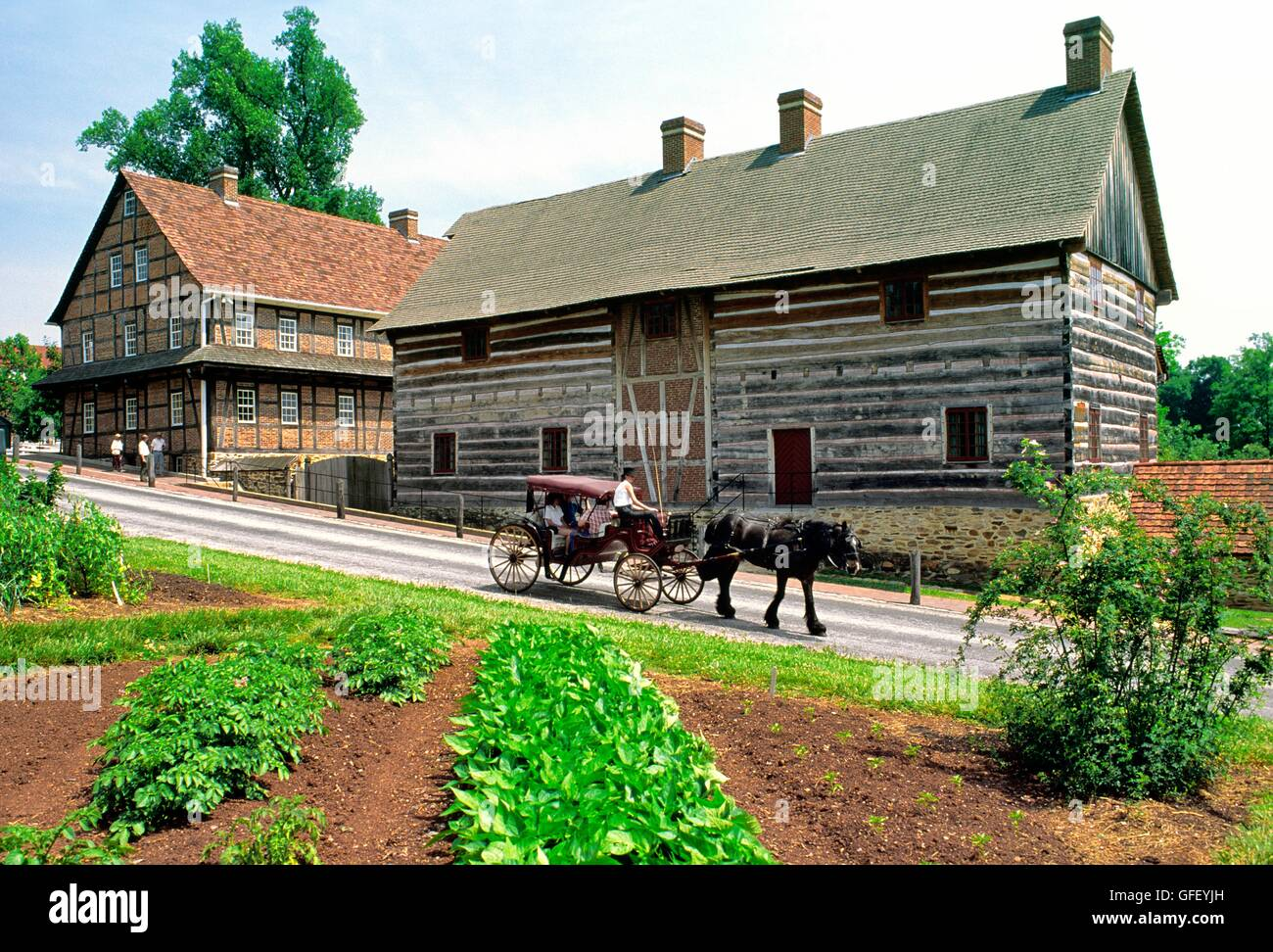 Buggy passes the Single Brothers House. Part of the Moravian religious community of Old Salem. Winston Salem, N. - Stock Image