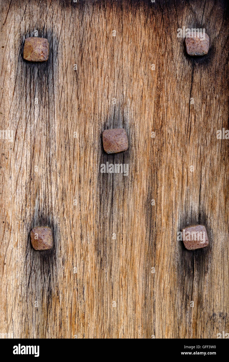 Section of ancient wooden door with five rusty metal nail heads studded across textured wood like a domino - Stock Image