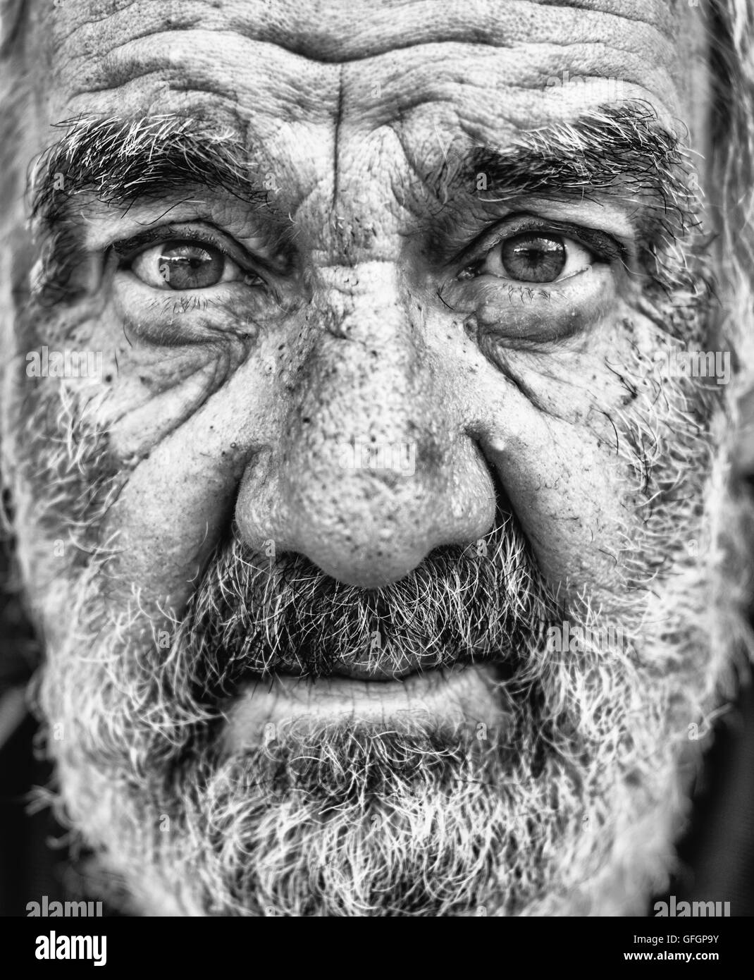 High contrast picture old man stock image