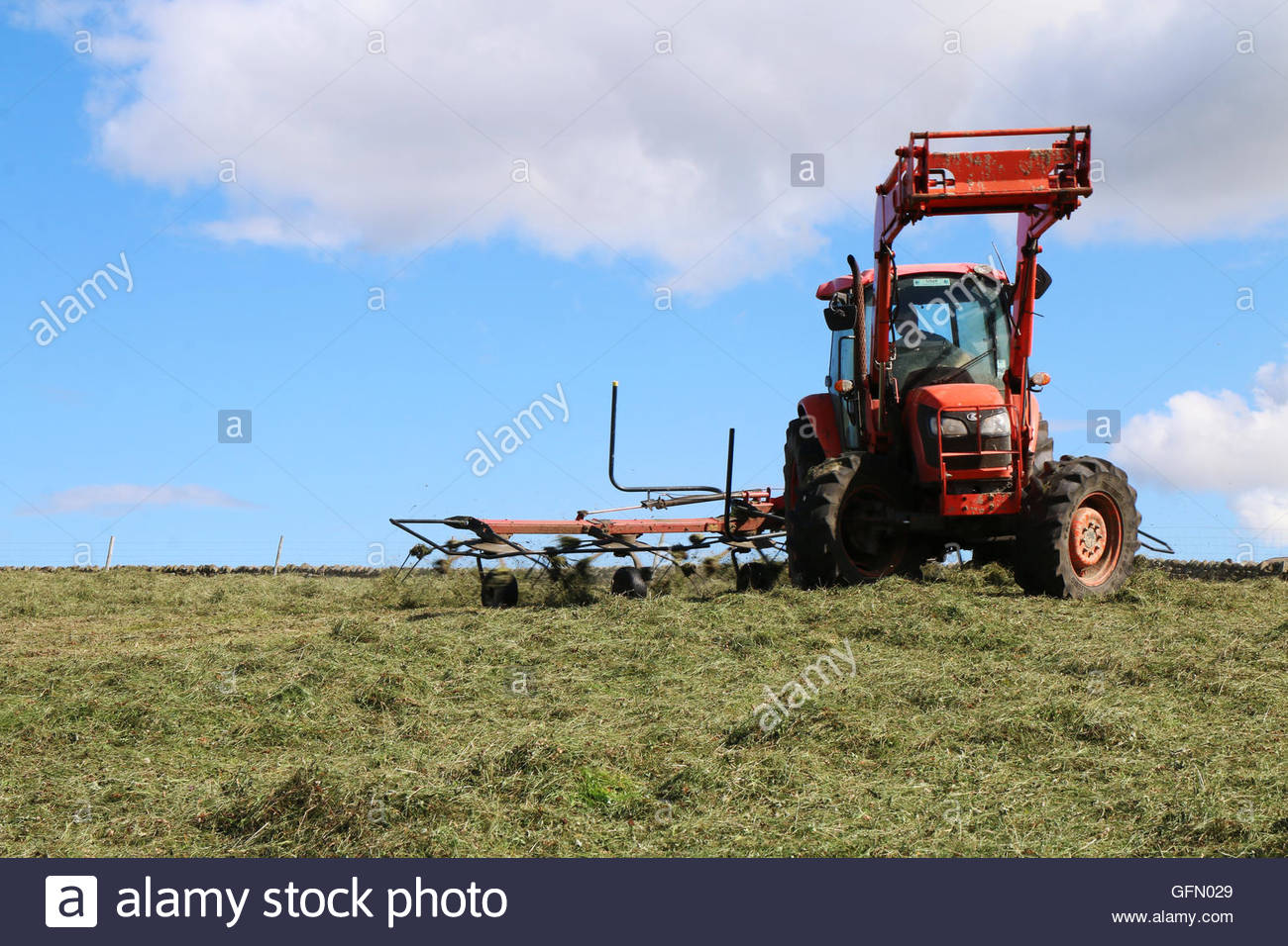"""Holwick, Middleton-in-Teesdale, Co Durham, UK 1st August 2016. The ancient proverb """"Make hay while the sunshines"""" Stock Photo"""