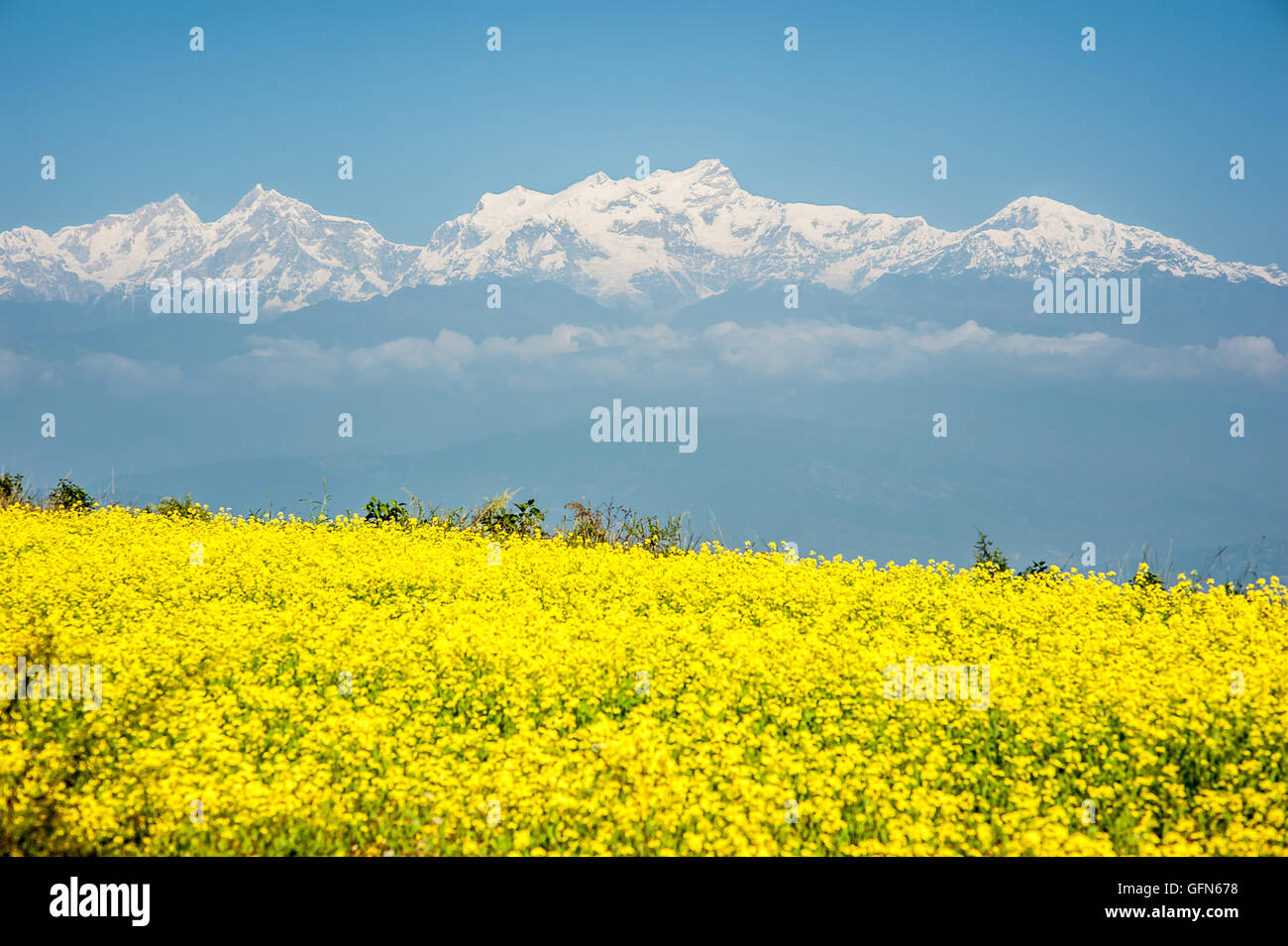 View of Himalayas skyline from Bandipur - Stock Image