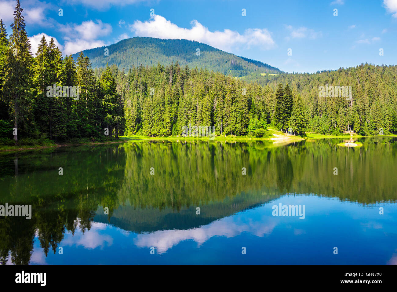 landscape near the lake among conifer forest in mountains in the early summer morning - Stock Image