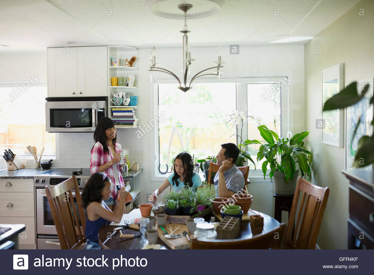 Family painting flowerpots at kitchen table - Stock Image