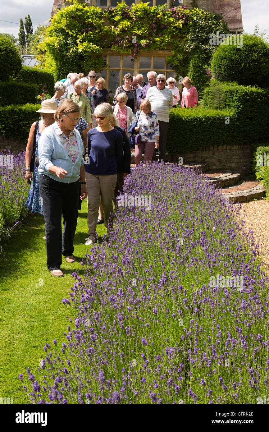UK, England, Bedfordshire, Stevington, Kathy Brown's garden, Kathy guiding visitors - Stock Image