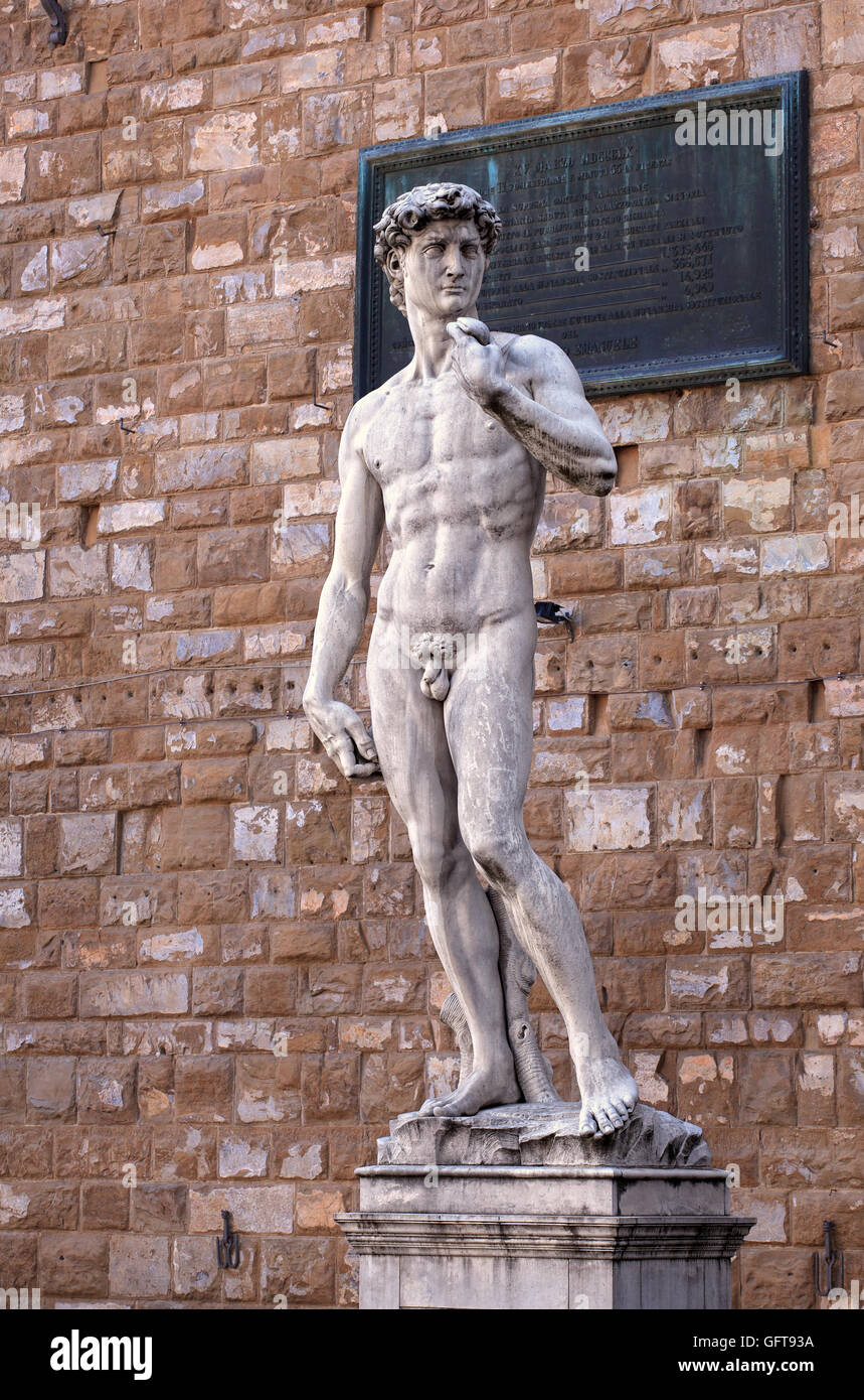 View of the David of Michelangelo in Florence, Tuscany. Italy Stock Photo