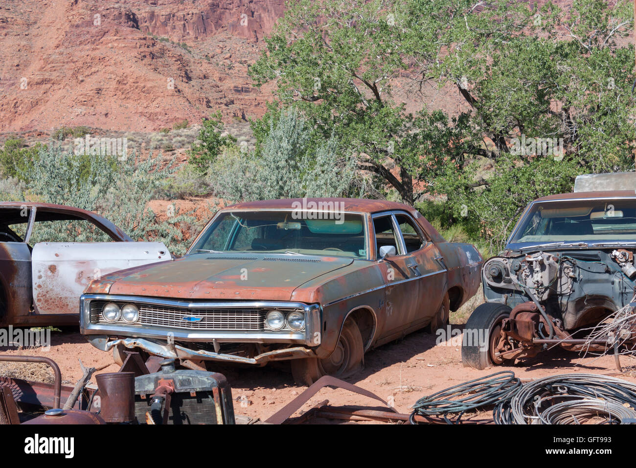abandoned rusty classic 1960s Chevrolet in junkyard - Stock Image