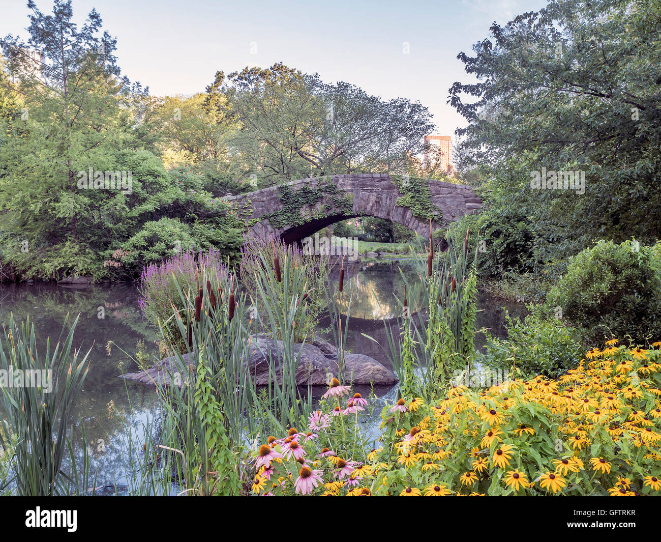 Gapstow bridge in Central Park in July and August with flowers - Stock Image