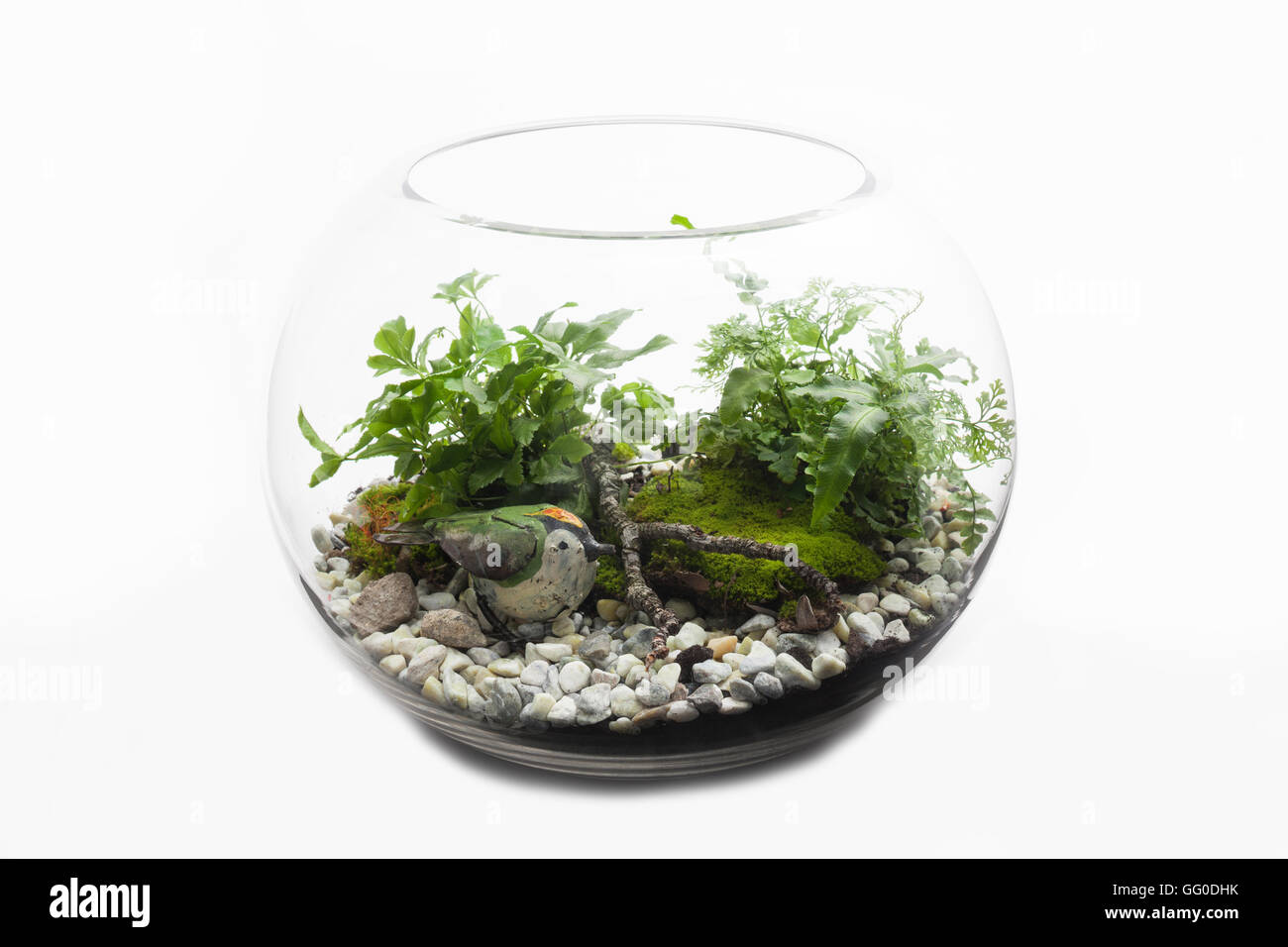 Glass Terrarium Bowl Of Australian Ferns Moss And Rocks With A Toy