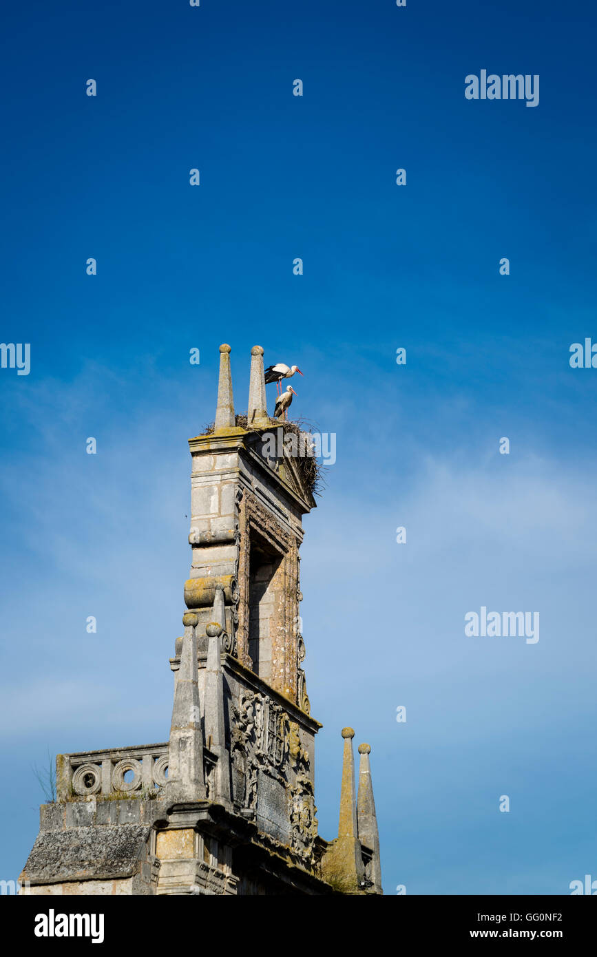 Two storks nesting on top of the ruins of an old monument, Burgos, Castile and Leon, Spain - Stock Image