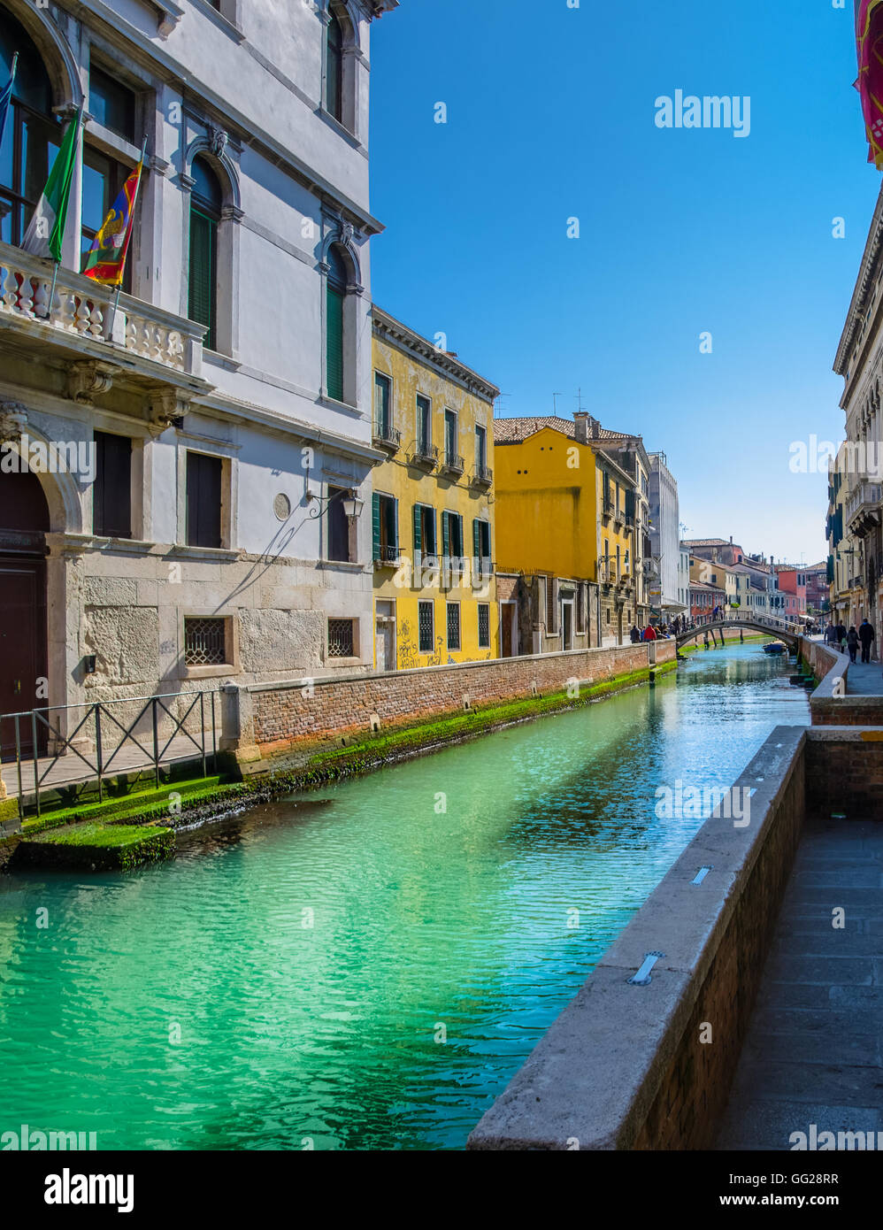Green water colour of sea channels in Venice, Italy - Stock Image