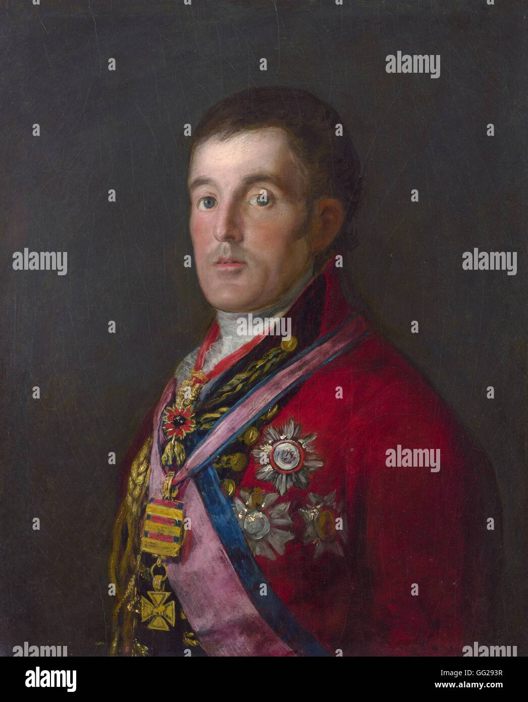 Francisco de Goya y Lucientes  (1746-1828) Spanish school The Duke of Wellington (1769-1852)  El Duque de Wellington - Stock Image