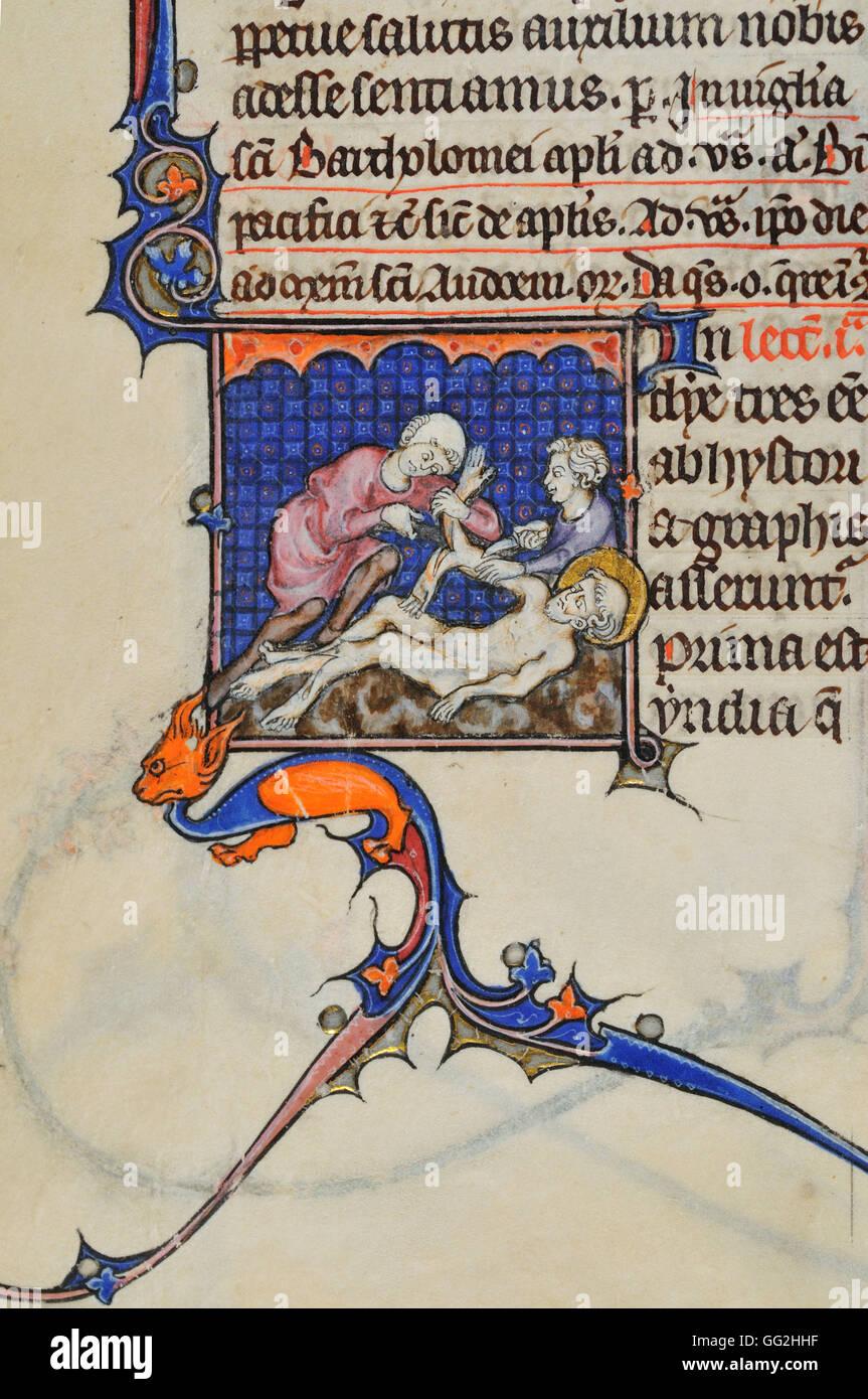 Saint Bartholomew Breviary for Paris, folio 381 Early 14th century manuscript Parchment - Stock Image