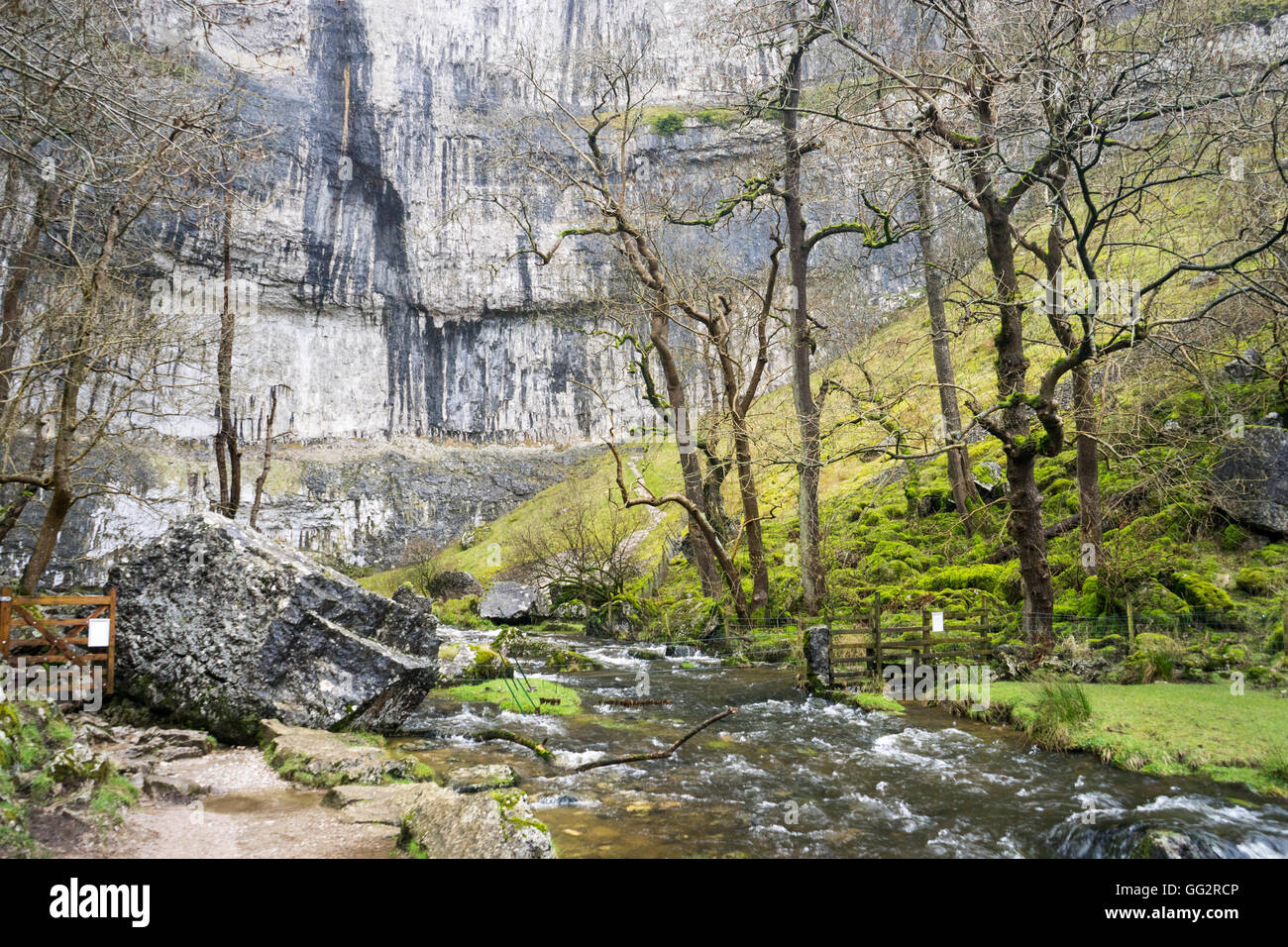 Deeply eroded limestone pavement at Malham Cove, Yorkshire Dales UK - Stock Image