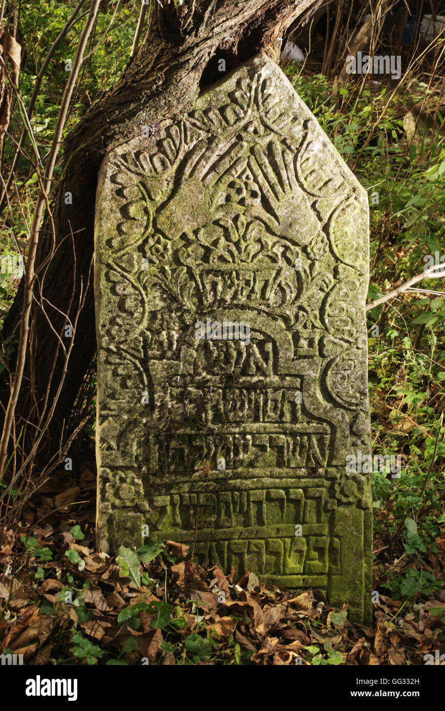 5516.Suceva, Romania. Decorated tombstone from the ancient graveyard, dating 18-19th C. - Stock Image