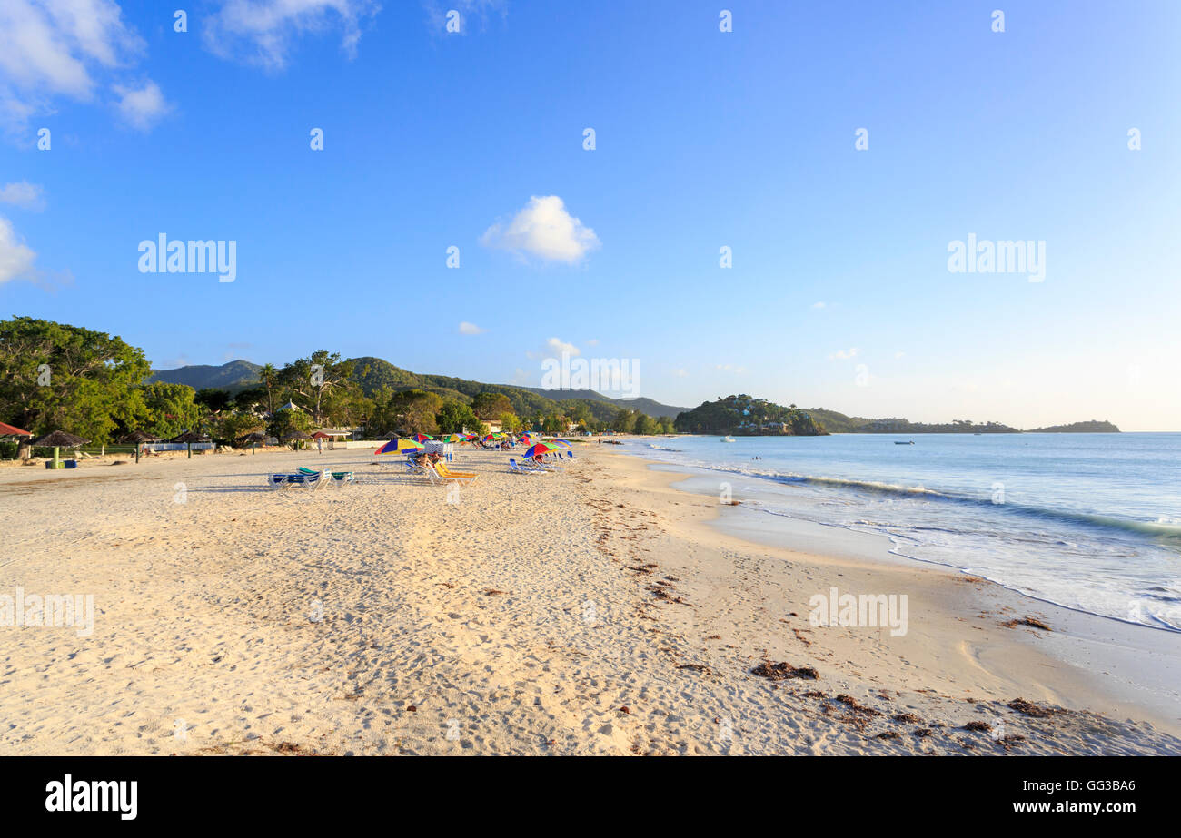 Antiguan landscape and sightseeing: unspoilt, uncrowded golden sand beach at Jolly Harbour, south-west Antigua on - Stock Image