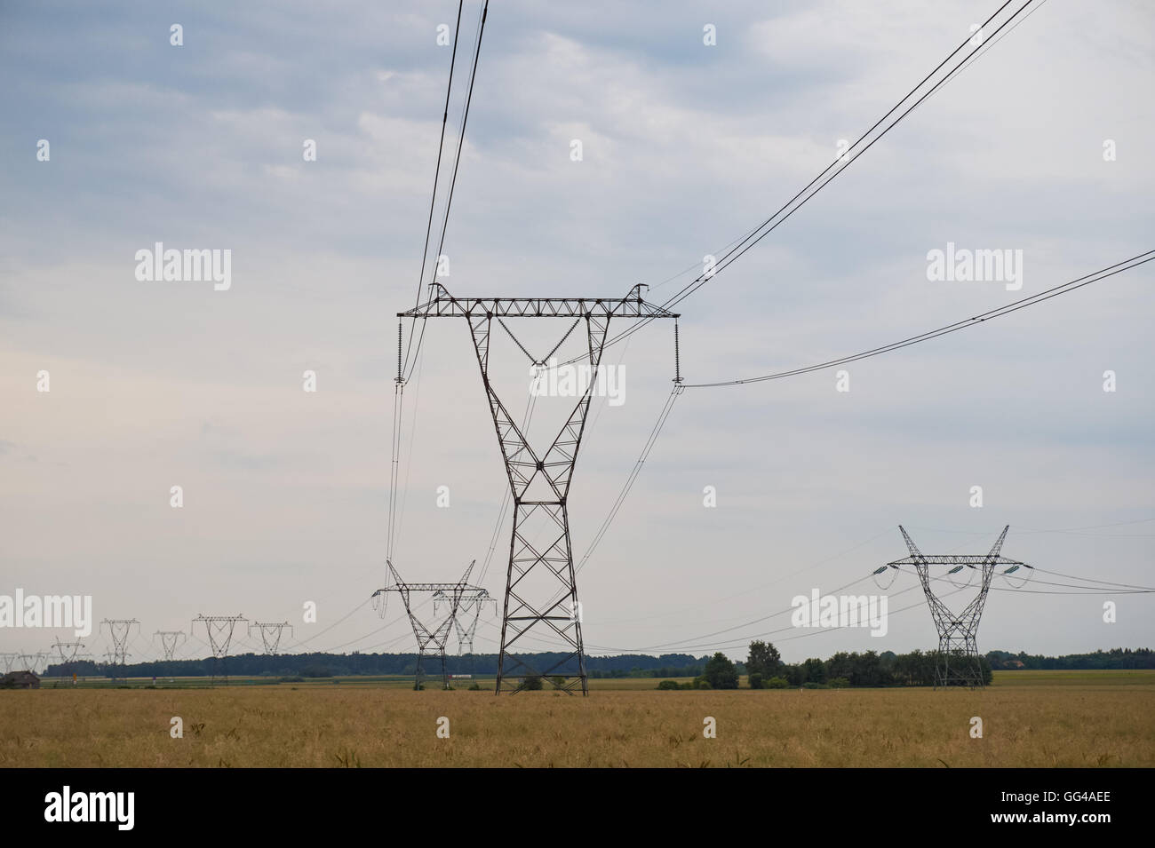 Electricity pylons in countryside - Stock Image