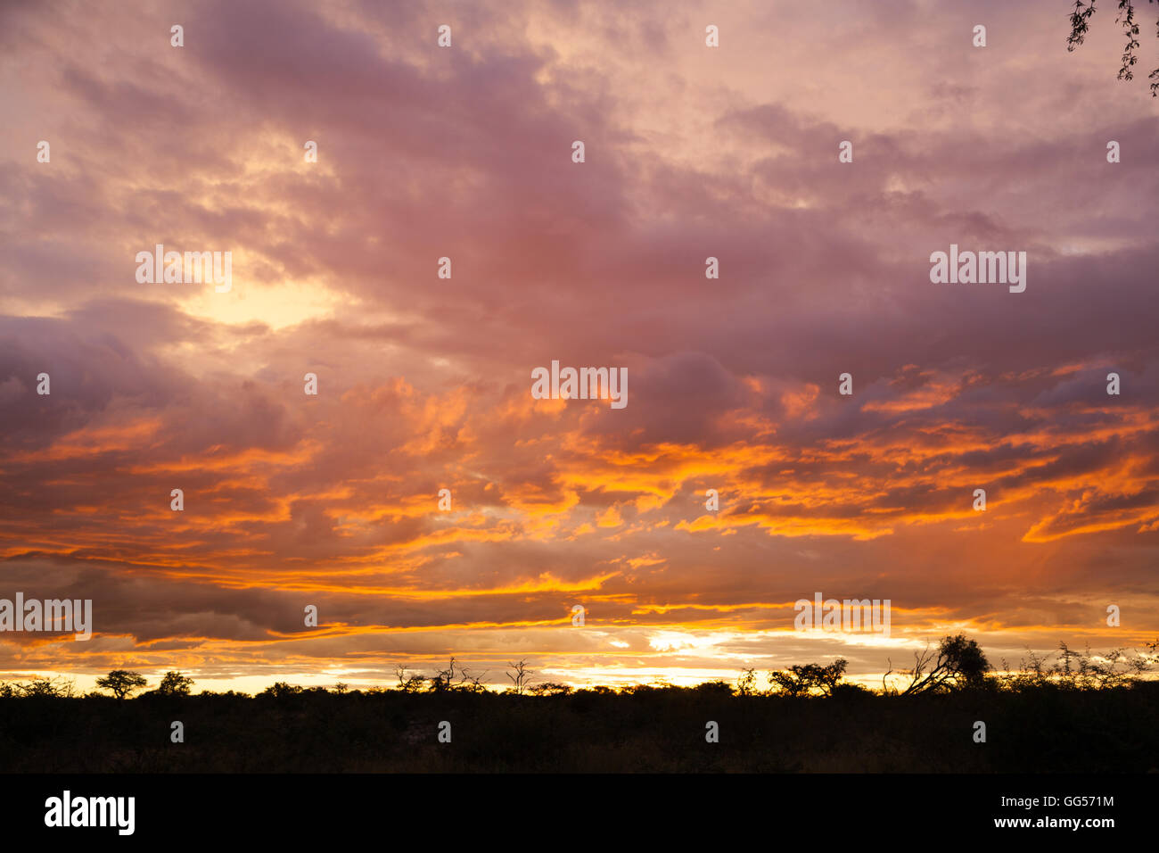 Namibia Sunset near Etosha National Park - Stock Image