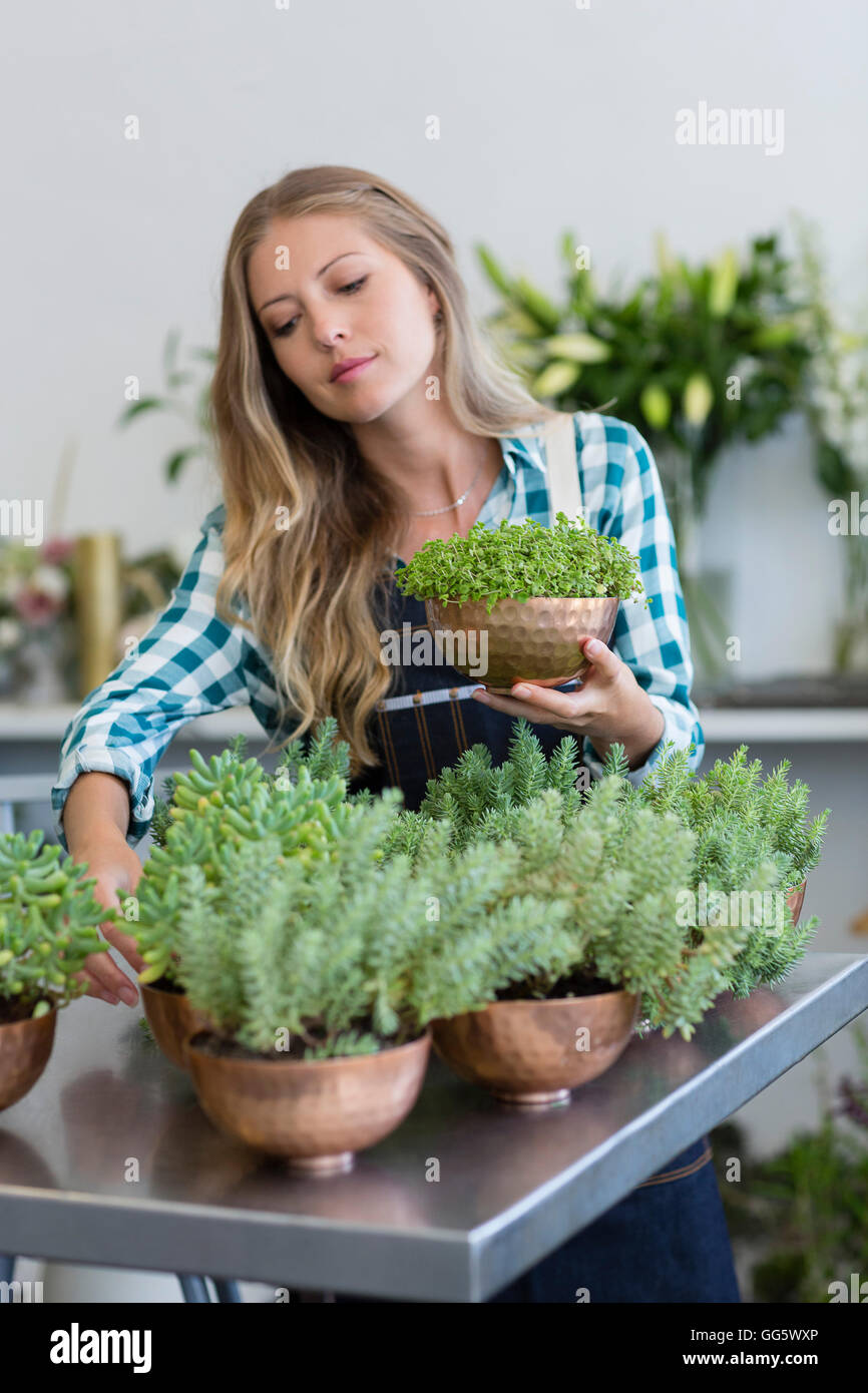 Female florist holding a potted plant - Stock Image