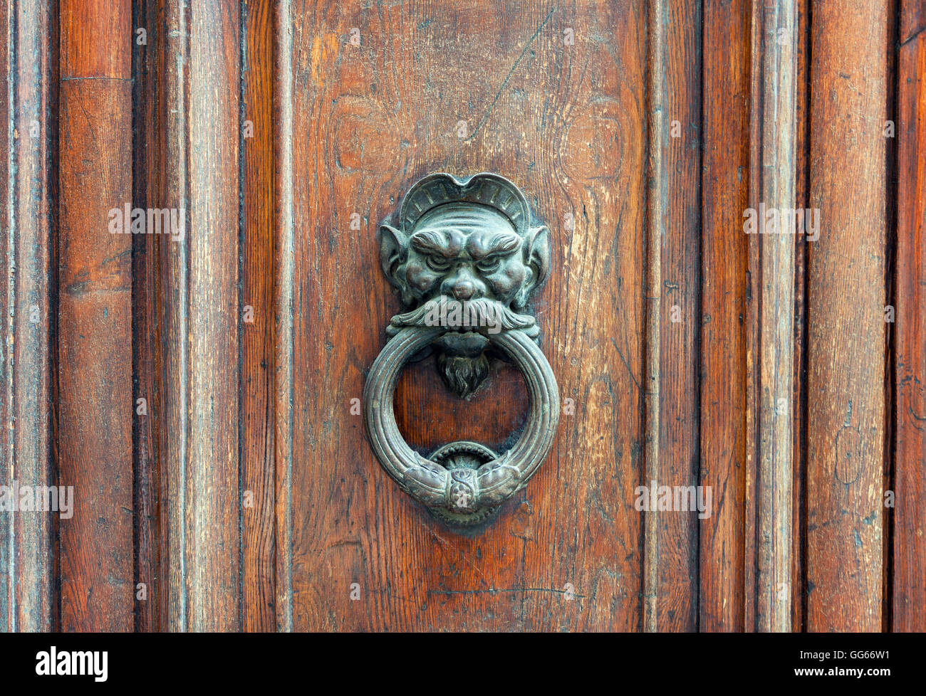 Iron lion doorknob on the old weathered wooden door in Florence, Italy - Stock Image