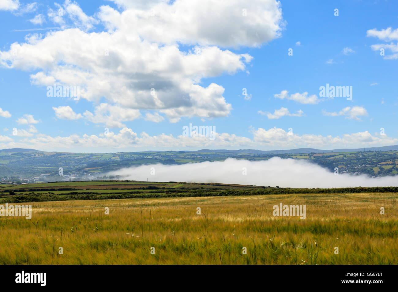Sea mist rolls in over the Teifi estuary, Gwbert on Sea; Ceredigion Stock Photo