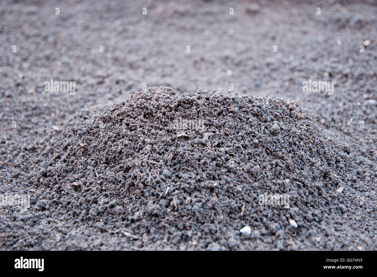 Soil pile- selective focus on the top - Stock Image