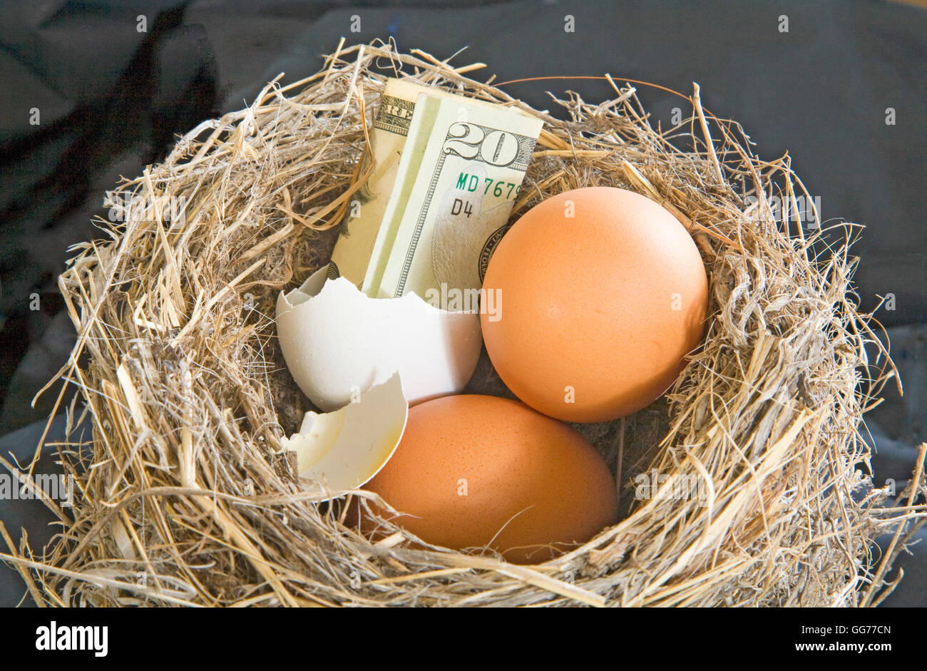 Is your nest egg getting a little low? - Stock Image