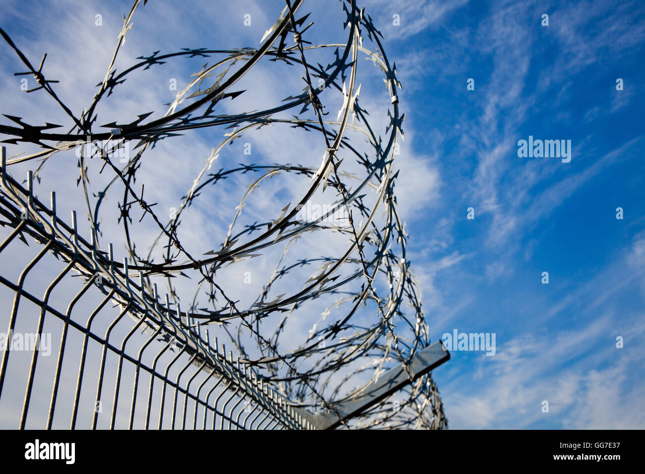 Barbed wire fence with blue skies and clouds in the background - Stock Image