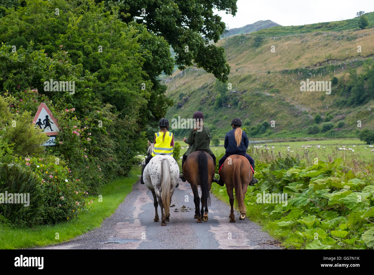 Three female horse riders riding horses in lane in middle of Argyll and Bute inScotland United Kingdom - Stock Image