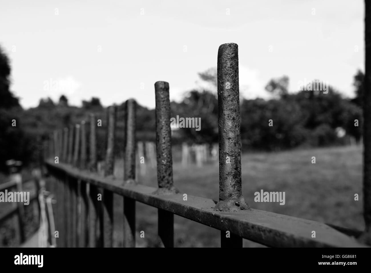 Black and white image metal railings in rural setting - Stock Image