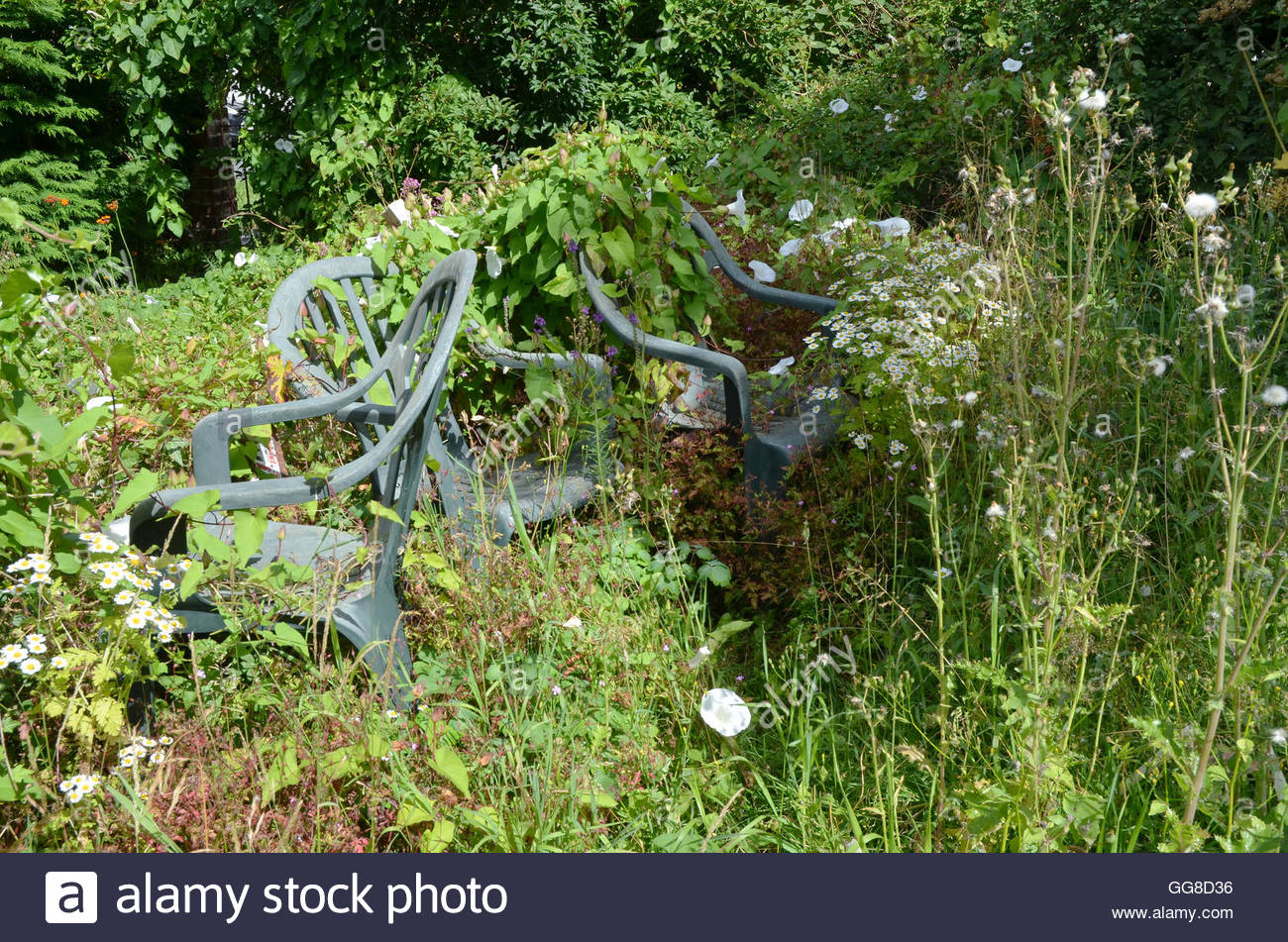 Plastic patio chairs left in a garden which has overgrown with neglect - Stock Image